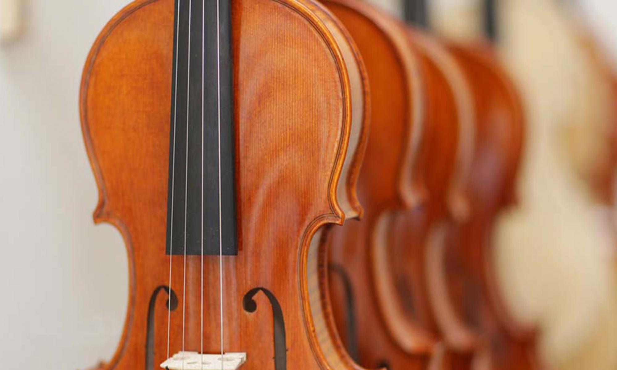 Schulteil Musikinstrumentenbau Klingenthal